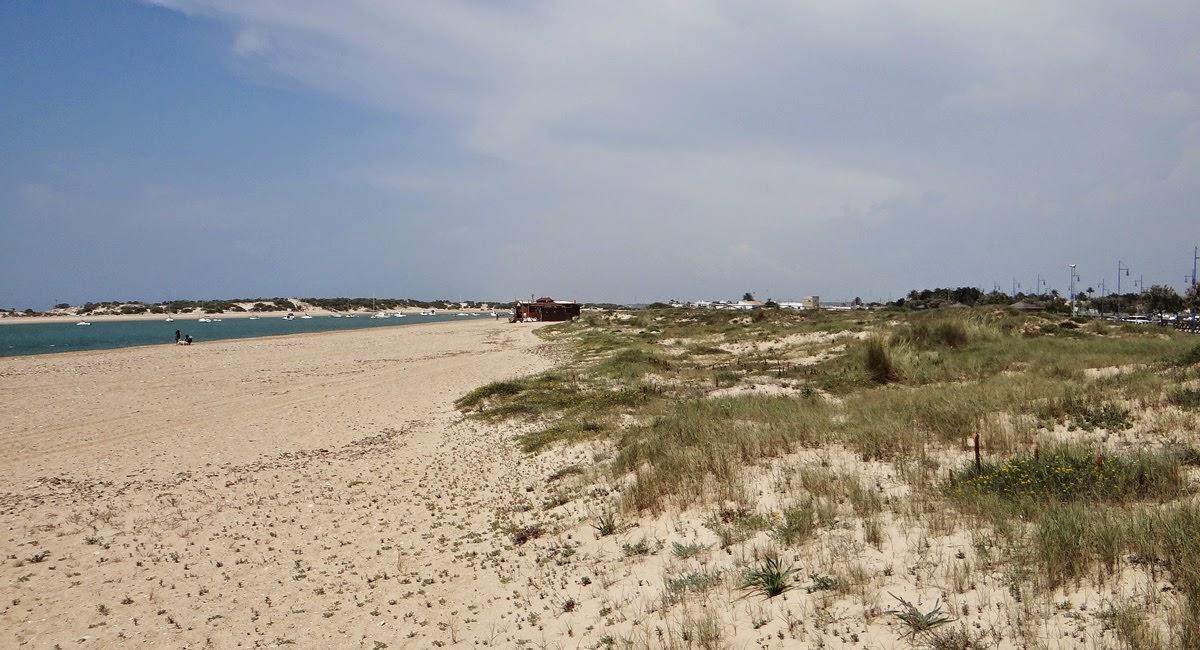Strand Sancti-Petri Chiclana de la Frontera