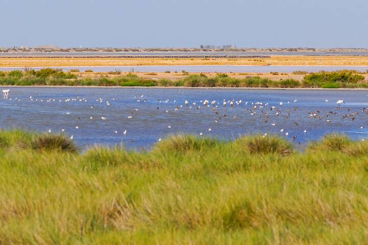 Nationalpark Doñana